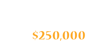 Stevie Ray Vaughan Owned and Stage-Played