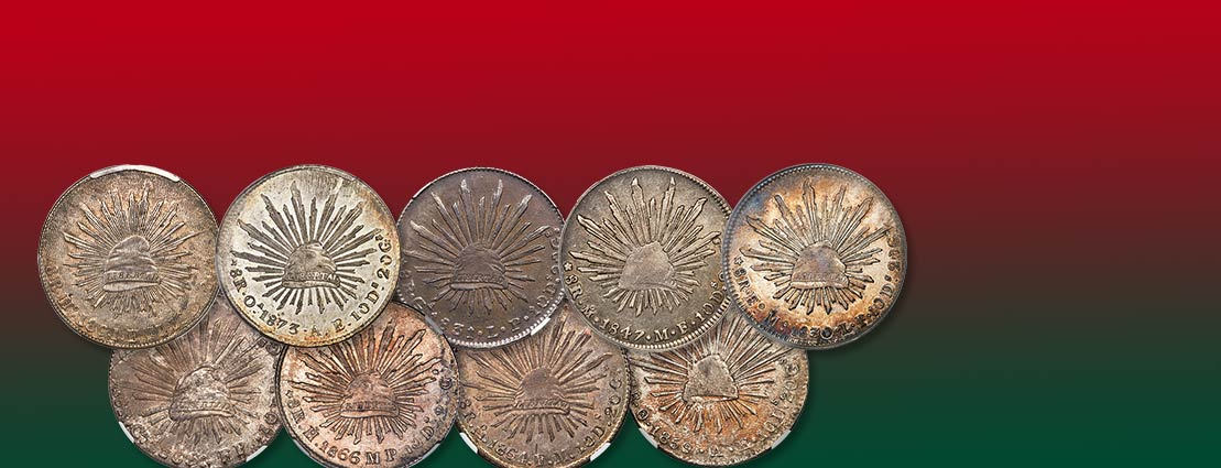 Special Selection of Brazilian Coins