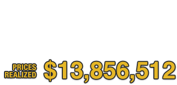 Winter Platinum Night Sports Collectibles Catalog Auction #50023 | Prices Realized: $13,856,512