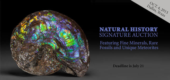 2015 October 4 Nature & Science Signature Auction - Dallas #5234