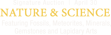 April 30 Nature & Science Signature Auction - Dallas #5280