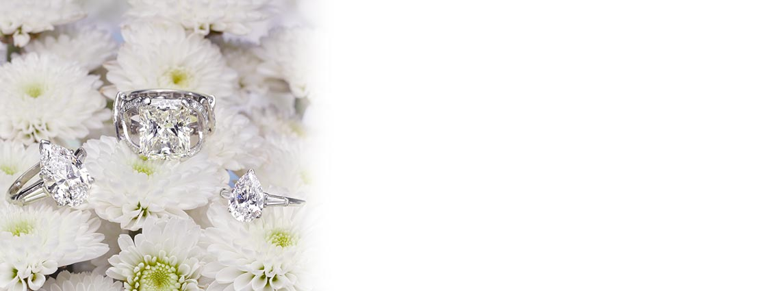 Featured Jewelry with Flower Background