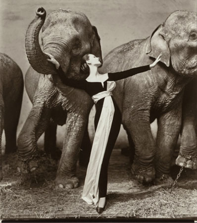 Richard Avedon (American, 1923-2004)Dovima with Elephants, Evening Dress by Dior, Cirque d'Hiver, Paris, 1955