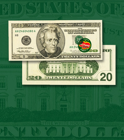 Obstructed Printing Error with Retained Obstruction Fr. 2084-H $20 1996 Federal Reserve Note. PMG Choice Uncirculated 64 EPQ.
