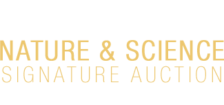 May 5 - 6 Nature & Science - Dallas #5386