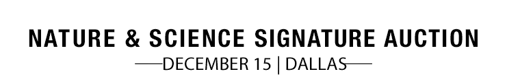 December 15 Nature & Science Signature Auction - Dallas #5389