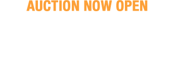 December 10 - 13 Fall Sports Collectibles Catalog Auction - Dallas #50031