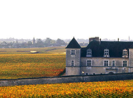 Meo-Camuzet was founded in 1902 and is located at the heart of Vosne-Romanée in the Burgundy region of France. The impressive 14 hectare farm is the largest vineyard owned by a single family in the region. This prized domain was left in the...